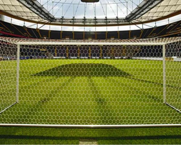 Tornetz 7,50 x 2,50 m mit 3,5 mm Netzstärke wabenförmigen Maschen